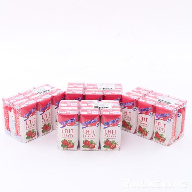 Thùng 24 hộp sữa tươi Promess NK Pháp (200ml/1hộp) - 4