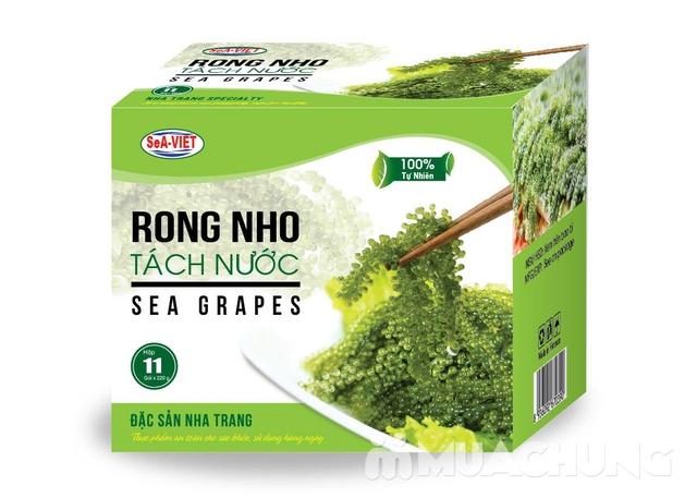 Rong nho tách nước đặc sản Nha Trang (Hộp 220g) - 6