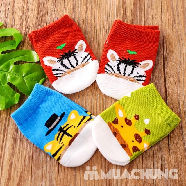 Combo 8 đôi tất Kid xuất Hàn cho bé - 8