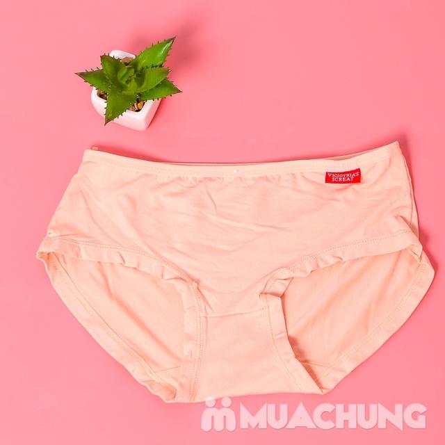 10 quần lót nữ cotton trơn, cạp cao nhiều màu - 7