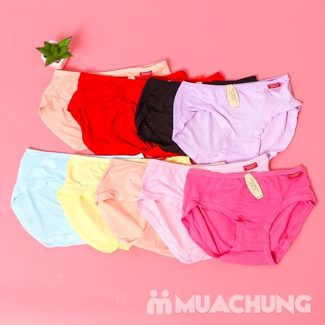 10 quần lót nữ cotton trơn, cạp cao nhiều màu - 6