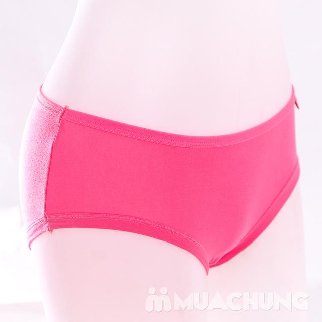 10 quần lót nữ cotton trơn, cạp cao nhiều màu - 2