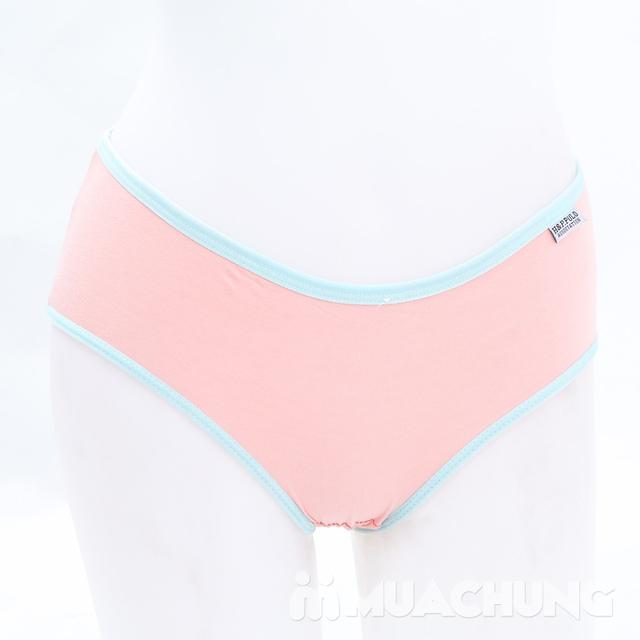 Combo 5 quần lót cotton trơn nhiều màu H&P.PULO - 13