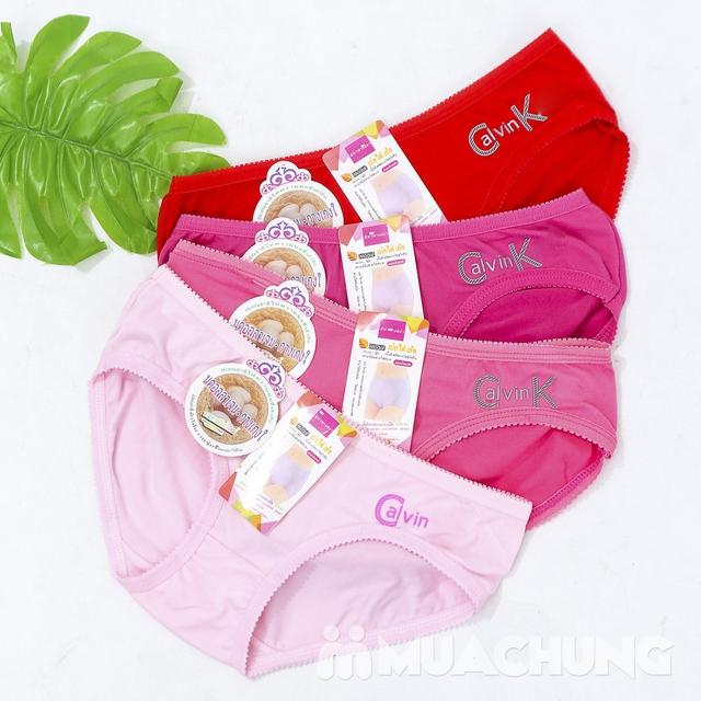 Combo 10 quần lót cotton nhiều màu - 7
