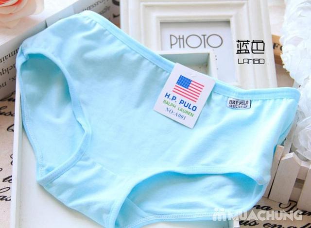 Combo 5 quần lót cotton trơn nhiều màu H&P.PULO - 7