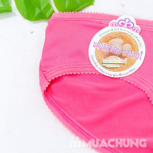 Combo 10 quần lót cotton nhiều màu - 12