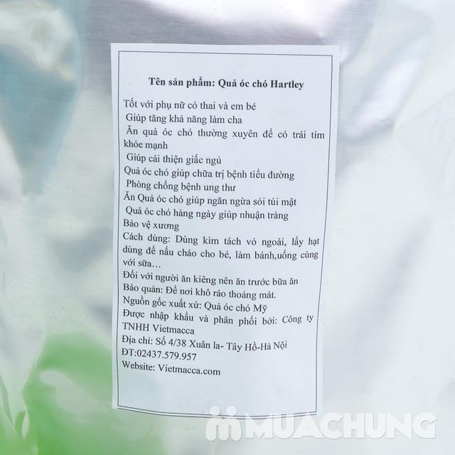Gói 500gr hạt óc chó Mỹ Hartley tốt cho sức khỏe  - 10
