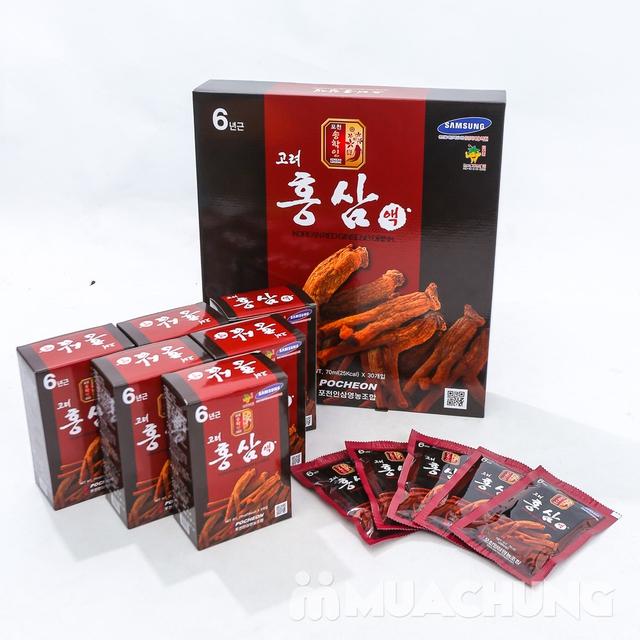 Nước hồng sâm Pocheon 6 năm tuổi NK Hàn Quốc - 9