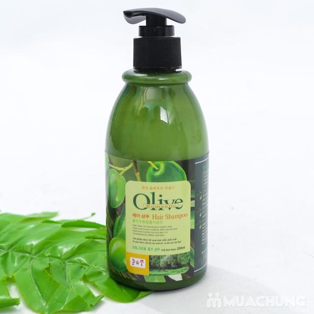 Bộ dầu gội & xả Olive Romantic mini 250ml/chai - 7