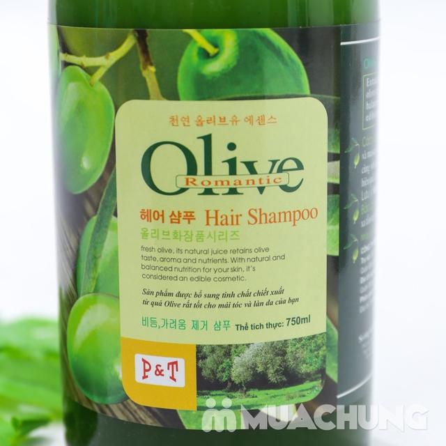 Bộ dầu gội & xả Olive Romantic 750ml/ chai - 11