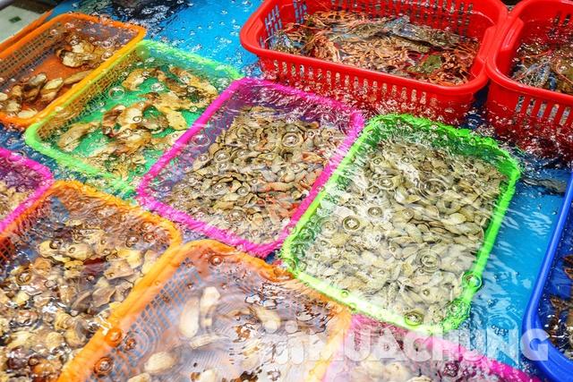 Set lẩu cá tầm & hải sản tươi sống cho 4 người Thiện Thìn Hải Sản tươi sống - 23