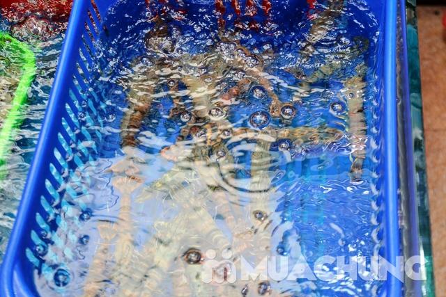 Set lẩu cá tầm & hải sản tươi sống cho 4 người Thiện Thìn Hải Sản tươi sống - 24