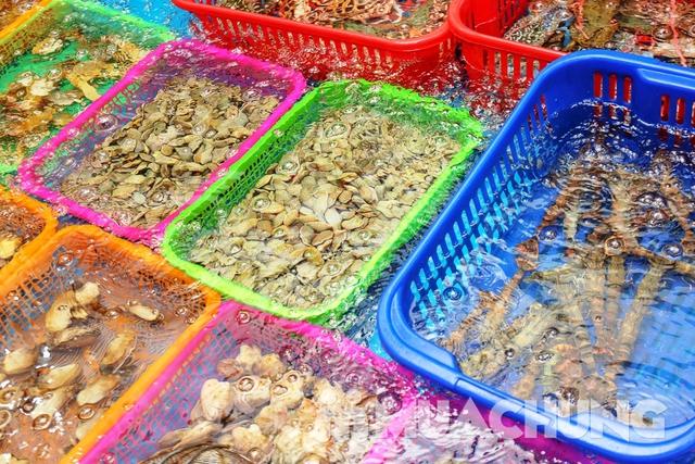 Set lẩu cá tầm & hải sản tươi sống cho 4 người Thiện Thìn Hải Sản tươi sống - 22
