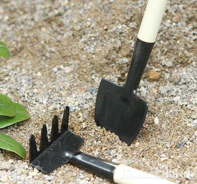 Combo 02 Bộ dụng cụ làm vườn mini 3 món - 12