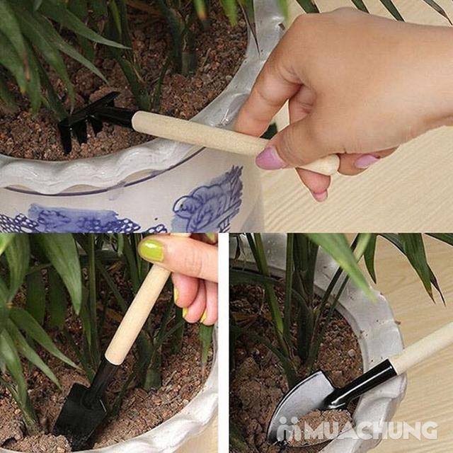 Combo 02 Bộ dụng cụ làm vườn mini 3 món - 13