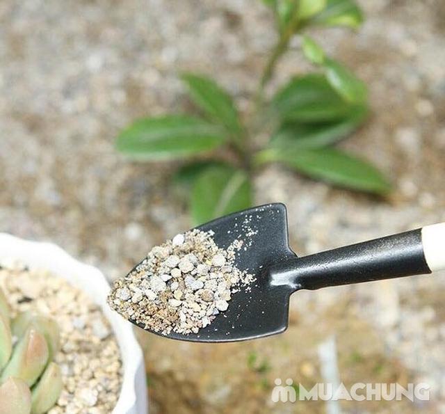 Combo 02 Bộ dụng cụ làm vườn mini 3 món - 11