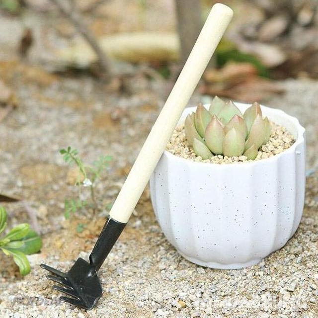 Combo 02 Bộ dụng cụ làm vườn mini 3 món - 10