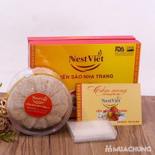 100gr Yến Sào Nha Trang 100% tự nhiên + Đường phèn - 6