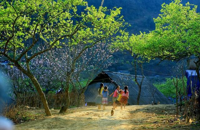 Khám phá Cao Nguyên Mộc Châu - Happy Land 2N1D - 2