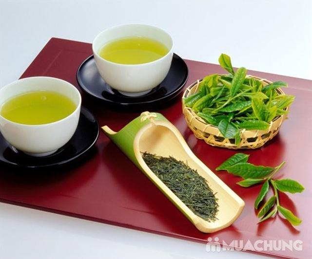 Combo 2 hộp trà xanh Ngọc Duy 100% tự nhiên - 7