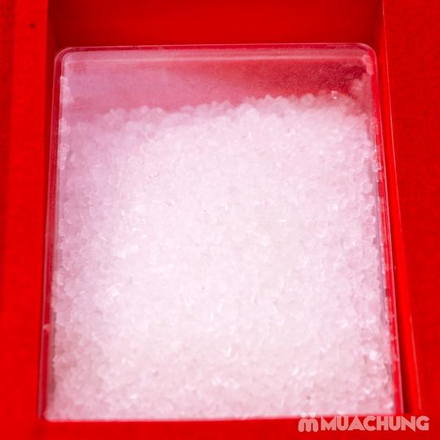 Yến sào thô nguyên tổ A Đồng 100g + đường phèn - 12