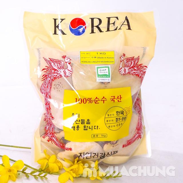 1Kg nấm linh chi & 1 hộp dầu xoa bóp Glucosamine - 3