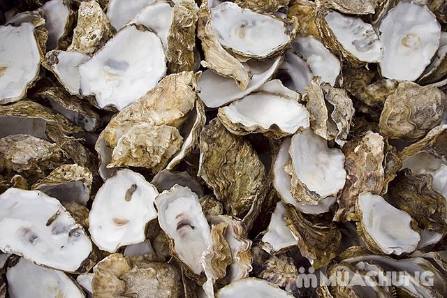Viên uống bổ sung Oyster Shell Calcium + Vitamin D - 10