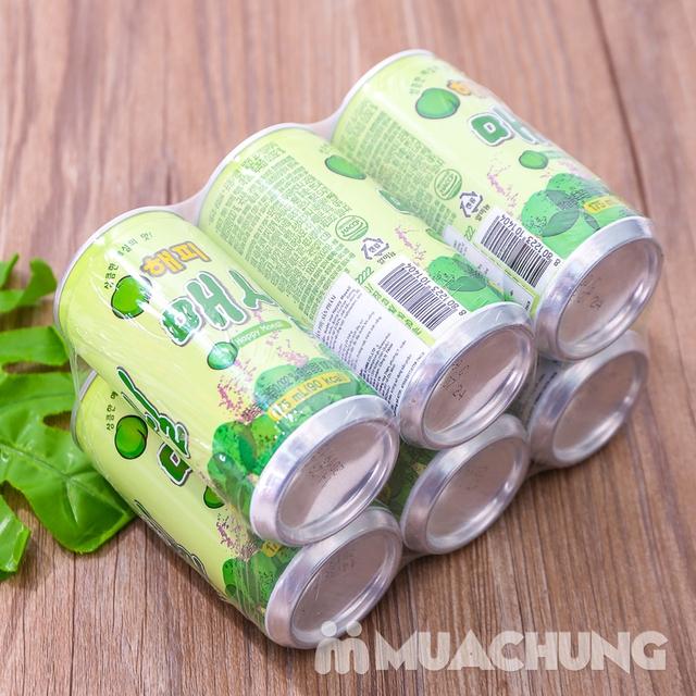Set 6 lon nước mơ nhập khẩu Hàn Quốc 175ml/ lon  - 9