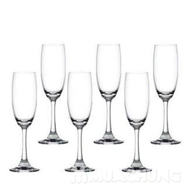 Bộ 6 ly rượu nhỏ thủy tinh Ocean - 5