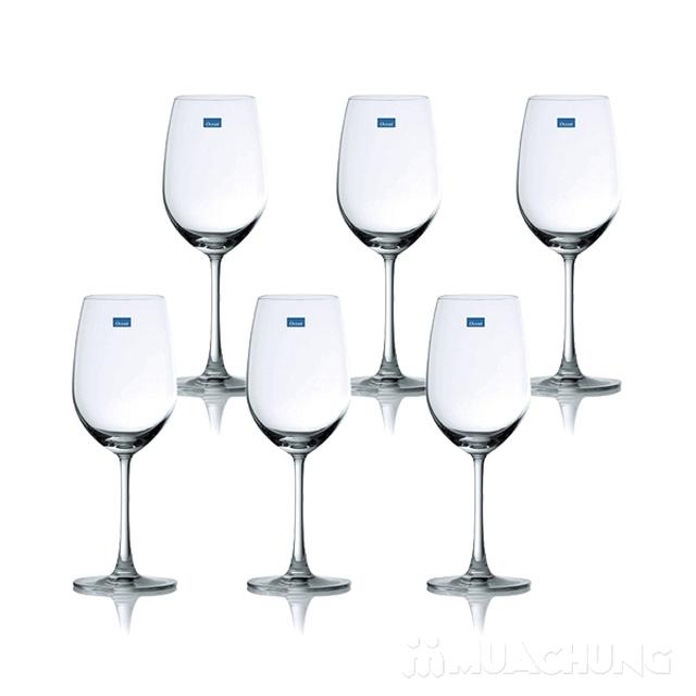 Bộ 6 ly rượu nhỏ thủy tinh Ocean - 4