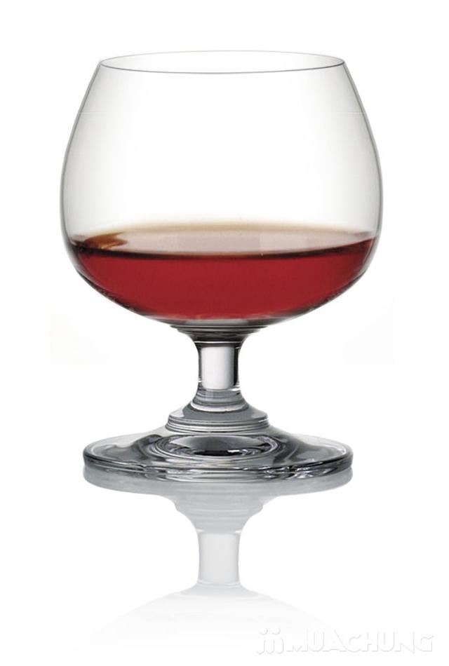 Bộ 6 ly rượu bầu thủy tinh Ocean - 4