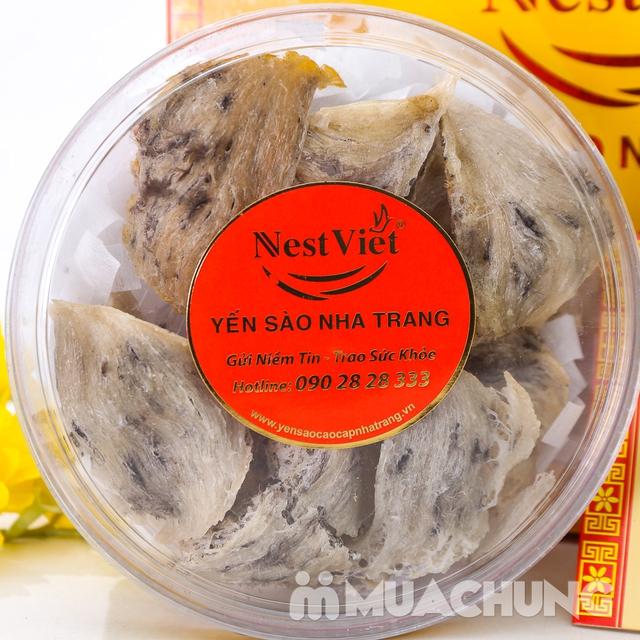 Yến sào thô nguyên tổ Nha Trang 100g + đường phèn - 14