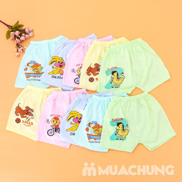 Combo 10 quần đùi cotton in hình xinh xắn cho bé - 7