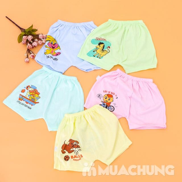 Combo 10 quần đùi cotton in hình xinh xắn cho bé - 8
