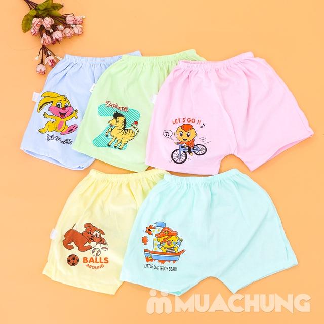 Combo 10 quần đùi cotton in hình xinh xắn cho bé - 9