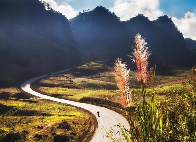Khám phá Mộc Châu mùa hoa cải - Săn mây Tà Xùa - 3