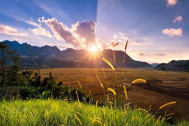 Khám phá Mộc Châu mùa hoa cải - Săn mây Tà Xùa - 2