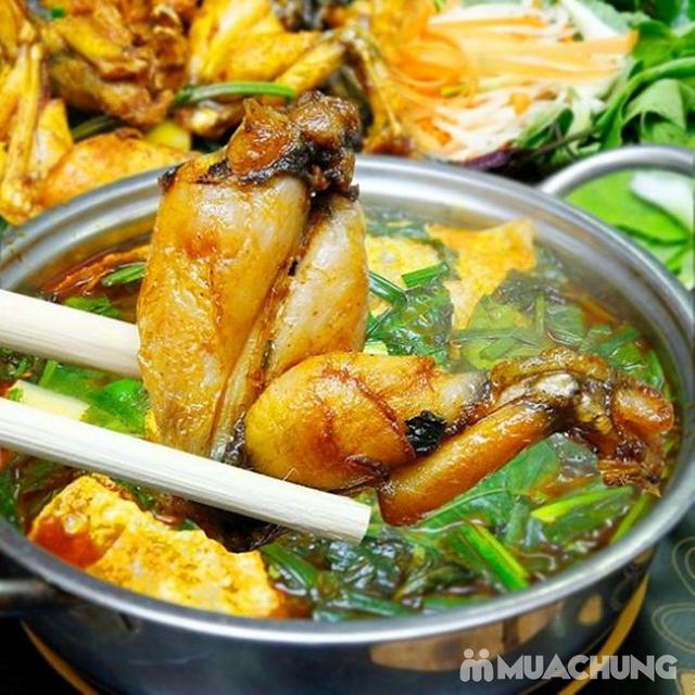 Combo Lẩu Ếch Măng Cay siêu đầy đặn cho 2-3 người Tại Nhà hàng Hồng Kỳ - 9