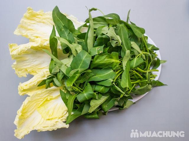 Combo Lẩu Ếch Măng Cay siêu đầy đặn cho 2-3 người Tại Nhà hàng Hồng Kỳ - 12
