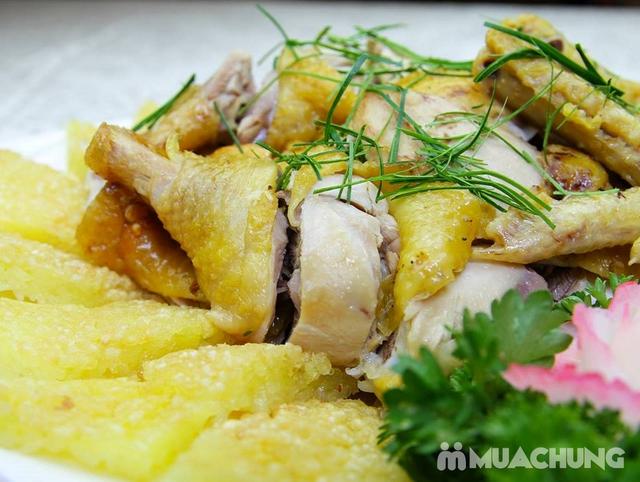 Set Bánh tráng cuốn thịt heo + Gà bó xôi + Bún nêm tại Nhà hàng Tam Kỳ Quán - Lý Thái Tổ - 17
