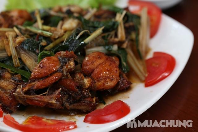 Lẩu Ếch om măng cay/om chuối đậu tại Lẩu Hội Quán -  tặng đĩa khoai chiên - 15