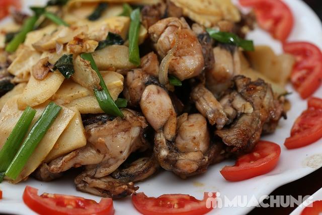 Lẩu Ếch om măng cay/om chuối đậu tại Lẩu Hội Quán -  tặng đĩa khoai chiên - 16
