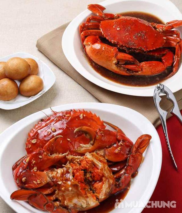 Voucher giảm giá tại NH QUEEN'S CRAB - Crab & Seafood Restaurant chuyên cua & hải sản phong cách Âu - 23