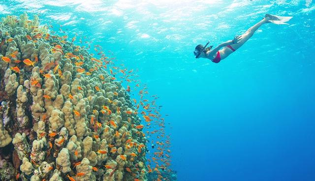 Tour 2 đảo phía Nam Phú Quốc, khám phá hòn Móng Tay, Hòn Dăm Ngang hoặc Hòn Mây Rút 1 ngày - 3