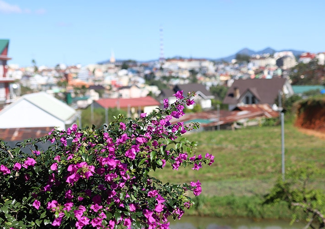 An Garden Đà Lạt 2N1Đ Phòng View Núi có ban công + Ăn Sáng - 38