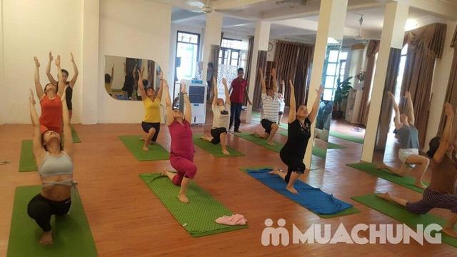 Thẻ tập Yoga 01 Tháng tại Âu Việt YOGA - 11