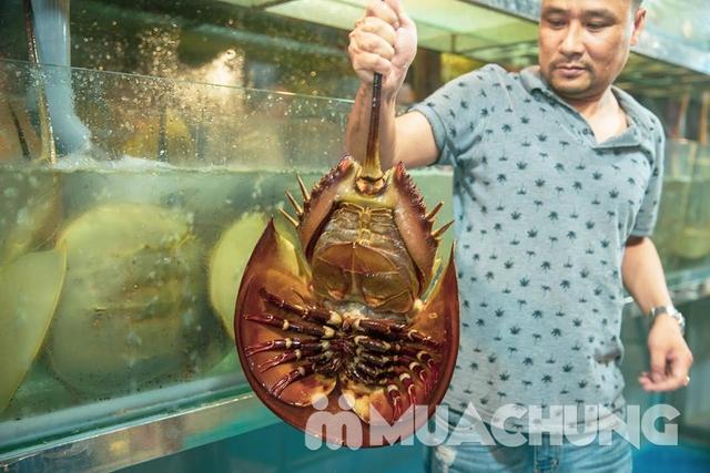 Set Lẩu hải sản tươi sống dành cho 6 người cực hấp dẫn tại - 3