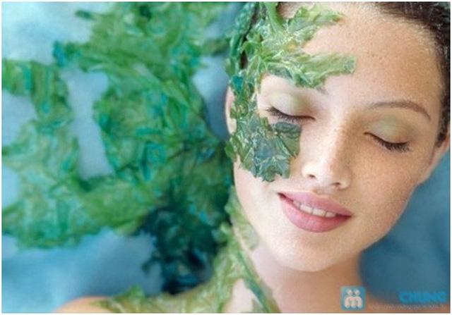Dưỡng trắng mịn da mặt bằng tảo biển Algae Powder và Chăm sóc mắt chuyên sâu với BIO-OPITIC. - 3