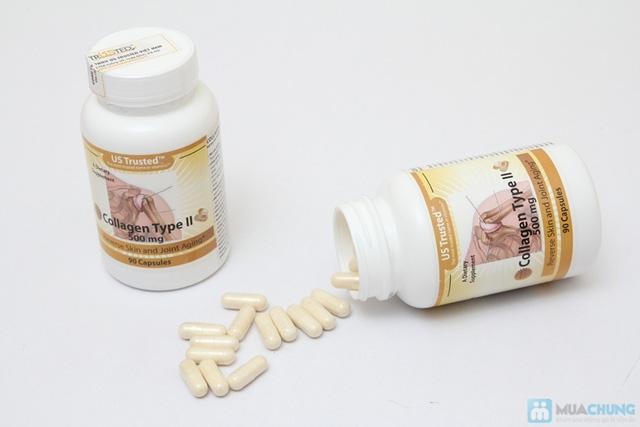 Collagen Type II (Hỗ trợ xương khớp) - 2