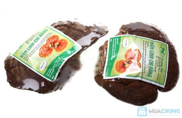 Nấm linh chi rừng Đà Lạt tốt cho sức khỏe  - Chỉ 299.000đ/01 kg - 1